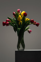 bouquet of colorful tulips in glass vase on grey