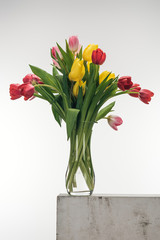 bouquet of tulips in glass vase on white