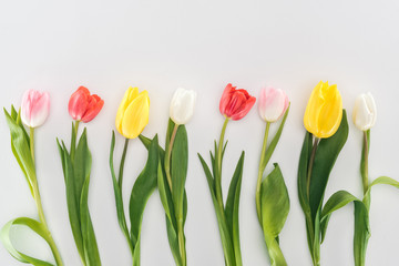 top view of yellow, red, pink and white tulip flowers isolated on grey