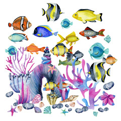 Watercolor oceanic tropical exotic fishes among the corals and sea stones illustration, hand painted on a white background