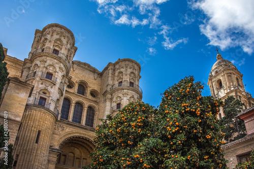 Malaga Cathedral On Plaza Del Obispo Malaga Stock Photo And