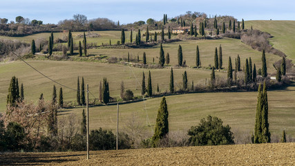 Beautiful cypress-lined country road in La Foce, Siena, Tuscany, Italy