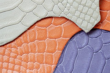 Colorful samples of genuine leather , embossed under the skin reptile, different colors. Texture pattern