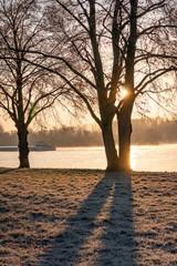 Sunrise in Wiesbaden at the Rhein river.