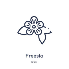 freesia icon from nature outline collection. Thin line freesia icon isolated on white background.