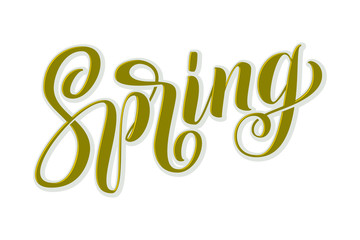Hand drawn lettering Spring with shdow and highlights. Elegant modern handwritten calligraphy. Vector Ink illustration. Typography poster on white background. For cards, invitations, prints etc