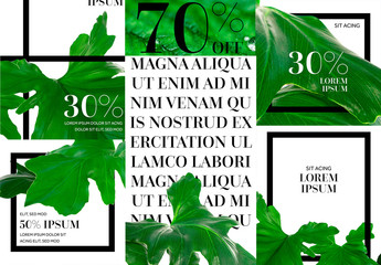 Social Story Post Layouts with Green Leaf Images