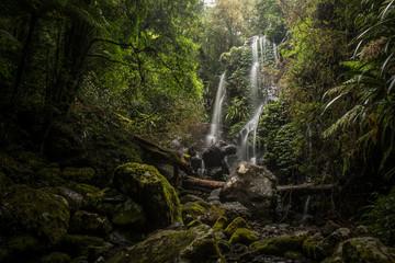 Chalahn Falls, Lamington National Park, Australia