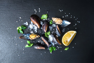 Fresh Mussels seafood isolated on dark vintage background with ice and herbs from top view