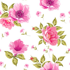 Seamless pattern of flower heads isolated on white background. Vector illustration.