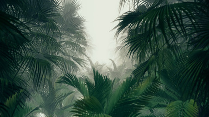 3D illustration Background for advertising and wallpaper in jungle scene. 3D rendering in decorative concept
