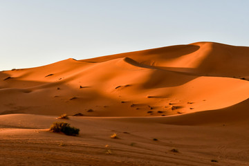 sand dunes in desert, photo as background