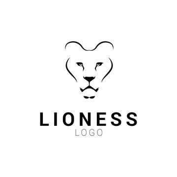 Lioness head logo template