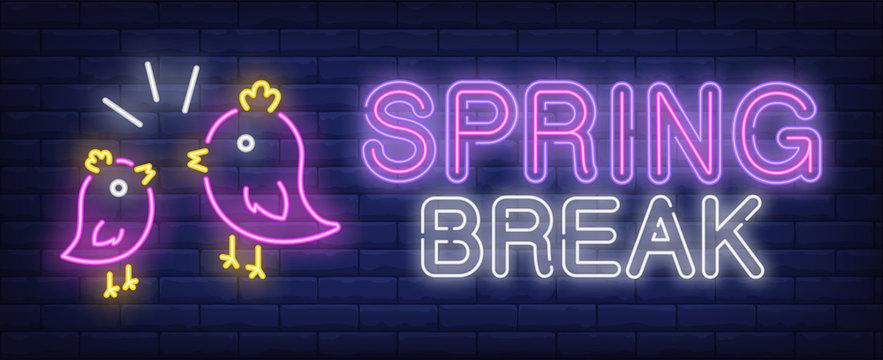 Spring break neon text with birds tweeting