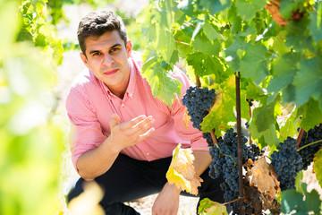worker at grape farm