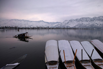 A man rows his boat in the waters of the Dal lake on a cold winter morning in Srinagar