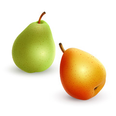 Set of pears different varieties of green and yellow colors, Realistic vector illustration on white background, 3D illustration for your design