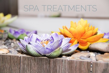 Picture with text SPA treatments. Banner advertising spa salon. Spa treatments. The rest of the soul and body.