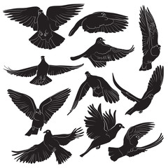 Set of isolated flying birds silhouettes. Vector illustration