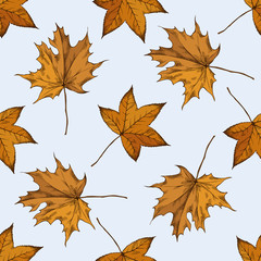 Seamless pattern with hand drawn colored maple leaves