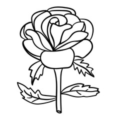 Cartoon doodle linear rose, flower isolated on white background. Vector illustration.