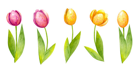 Watercolor Easter Sets