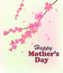 Mother's day card on a white background pink spring flowers on tree branches