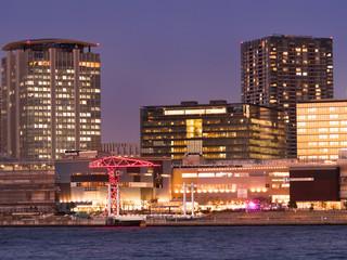 Fototapete - ららぽーと豊洲と高層ビル街
