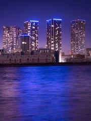 Fototapete - 臨海地域の高層マンション
