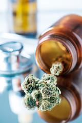 marijuana buds on a doctors table