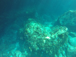 underwater caribbean sea