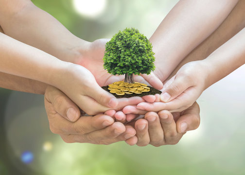 Retirement planning and family investment concept with wealthy tree growing on parent -.children's hands