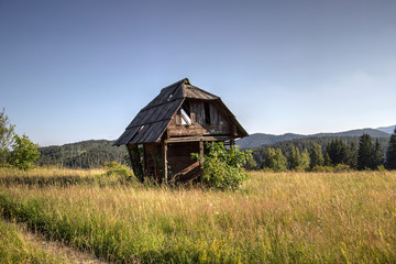 TARA National Park, Western Serbia - Abandoned and decaying log cabin