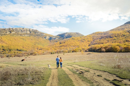 Couple walk retriever dog autumn sunset countryside meadow holding hands
