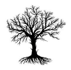 Bare Root and Tree Vector, Silhouette Vector on White Background - Vector Illustration