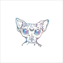 Color illustration of the Canadian Sphynx with the moon in the forehead. An idea for a tattoo.