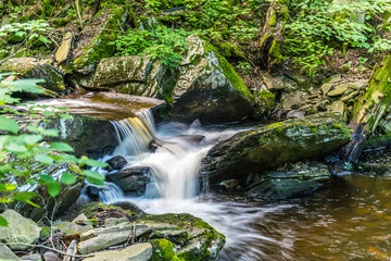 Creamy Water Flows Over Shale Rock in Ricketts Glen State Park of Pennsylvania