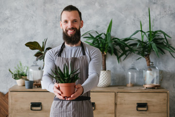 Home gardening. Nature and care concept. Young smiling bearded man in apron showing home plant.