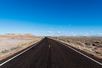 Highway vanishing to perspective on the horizon in a vast desert landscape under a bright blue sky