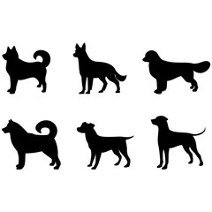 dog icons pet