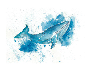 Watercolor blue whale
