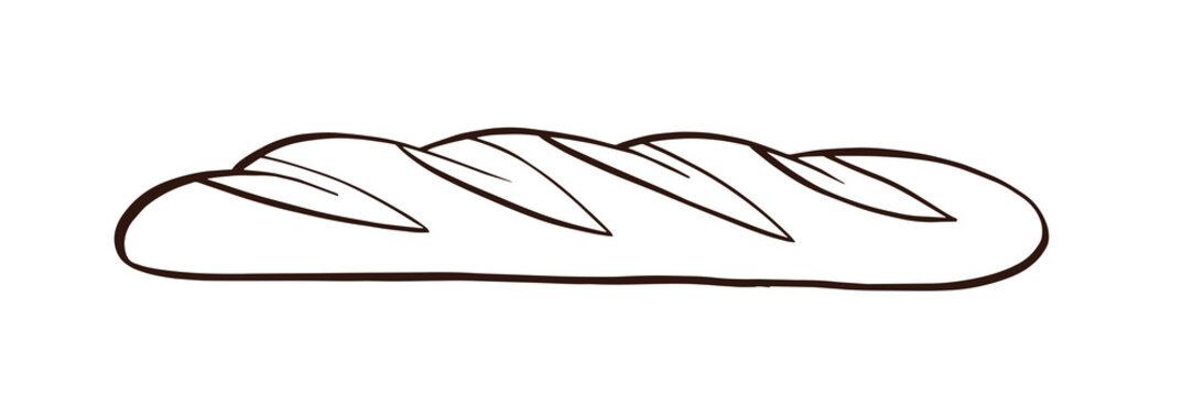White bread. Baguette. Hand drawn vector.