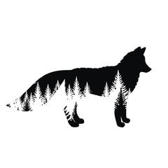 Silhouette of fox