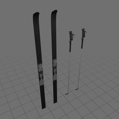 Nordic skis with poles