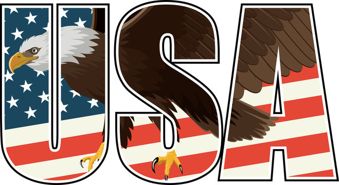 vector Bald Eagle on US flag illustration
