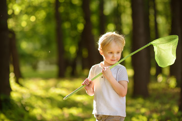 Cute little boy catches butterflies with scoop-net on sunny meadow. Explorer of nature.