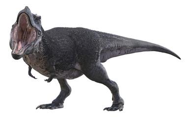 3D render of Tyrannosaurus Rex.
