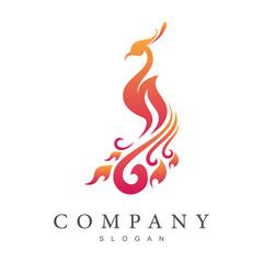 elegant peacock logo