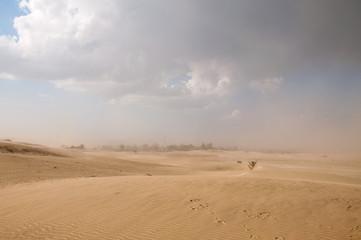Printed roller blinds Desert Dust storm in the Thar desert