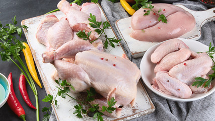 Different types of raw chicken meat